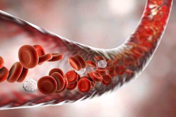 Cientistas criam glóbulos vermelhos que podem até ser melhores que os reais