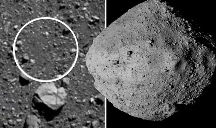 Asteroid shock: How asteroid Bennu revealed something NASA scientists  weren't ready for | Science | News | Express.co.uk