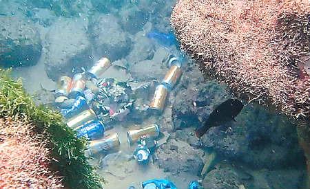 Após Carnaval, mergulhadores retiram mais de 700 kg de lixo do mar em  Salvador – Cidade Informa – Editora Cidade Nova