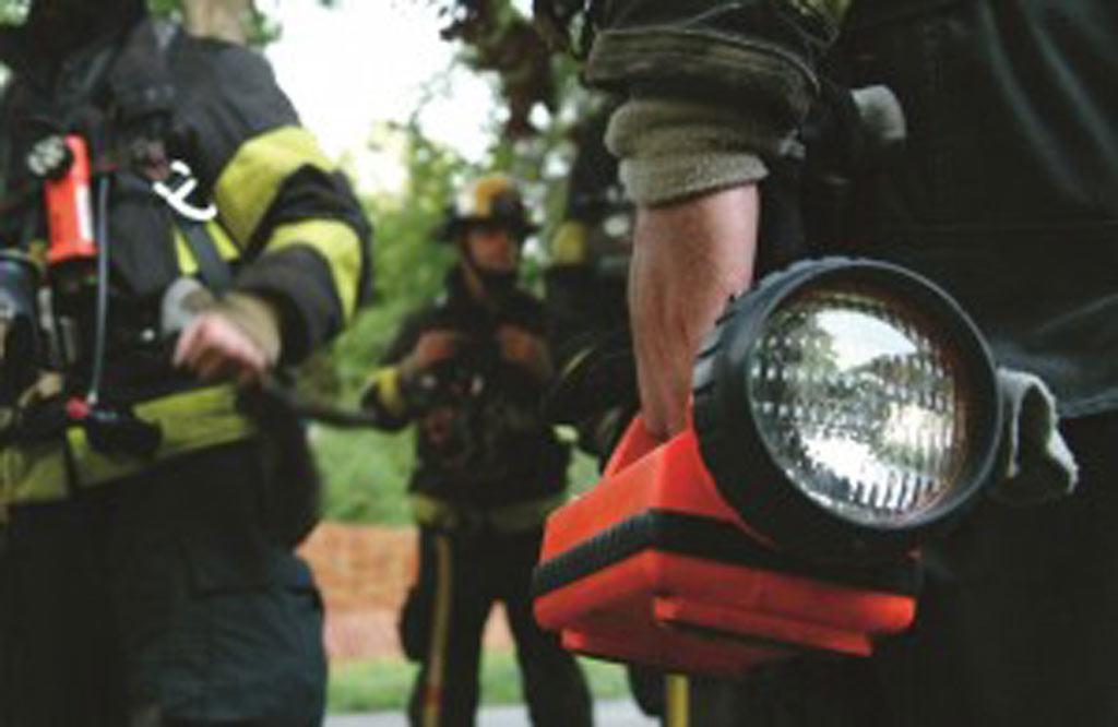Para esses bombeiros, um simples dia de resgate de animais se torna um dia surpresa