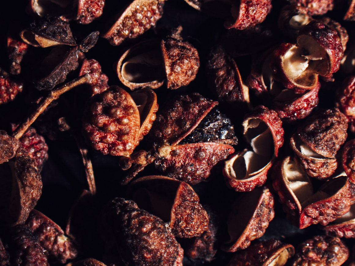 Sichuan peppercorns get their close-up.