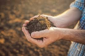 A agricultura e as mudanças climáticas globais | Rehagro