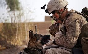 Papel de parede : 1920x1200 px, cachorro, amigos, militares, humor,  pessoas, soldado, Guerreiro, Guerreiros 1920x1200 - wallbase - 1826413 -  Papel de parede para pc - WallHere