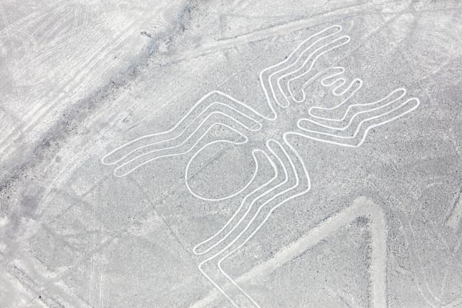 Nazca Lines spider - Shutterstock