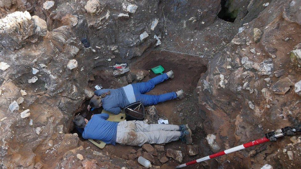 Crânio de dois milhões de anos de 'primo' humano desenterrado