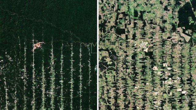 Як люди змінили Землю 2020: аерофото до та після – вплив
