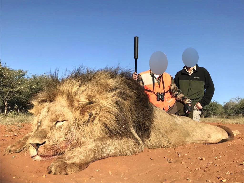 Investigação secreta expõe laços secretos do presidente sul-africano à caça de troféus