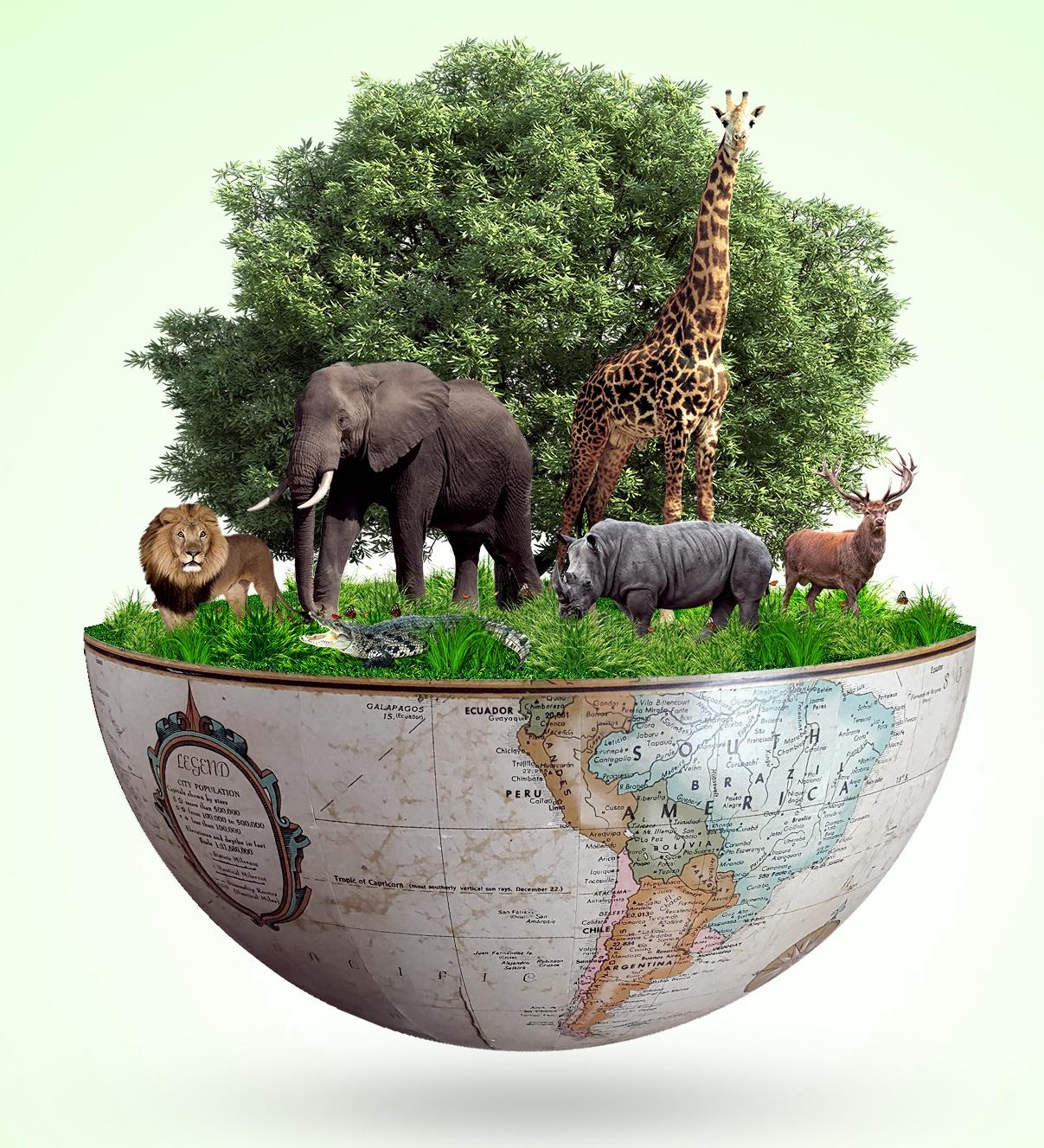 Concentre-se nas pessoas para valorizar a natureza