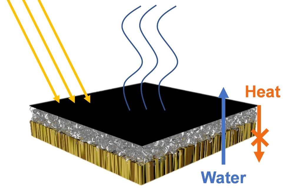 Energia solar, madeira e bactérias unem forças para purificar a água para beber