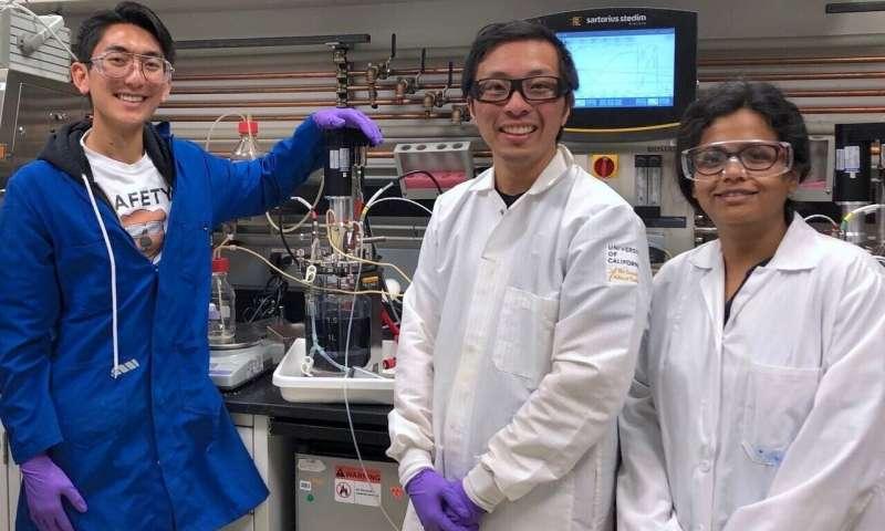 A técnica de 'religação' do micróbio promete um boom na biofabricação