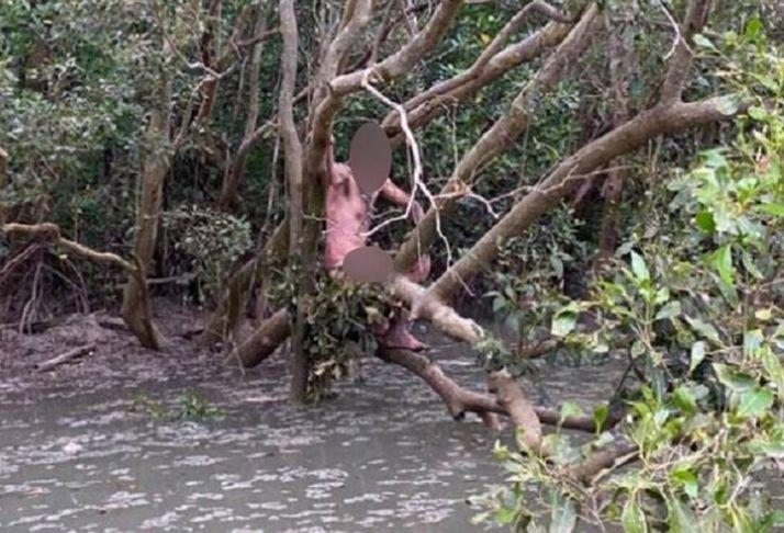 Fugitivo é resgatado sem roupas em mangues na Austrália